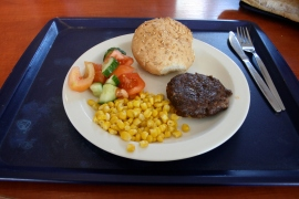 Saturday: LEAN BEEF BURGERS, GARLIC POTATOES, VEGETABLES (Health platter)