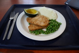 Friday: CRUMBED CHICKEN STEAK, CHEESY MUSTARD SAUCE, CREAMY MASHED POTATOES (Default)